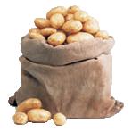 9 KG sack of potatoes